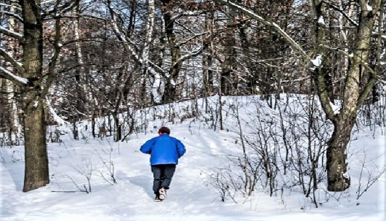 Tineri rătăciți în pădurile din Voineasa, găsiți de jandarmi