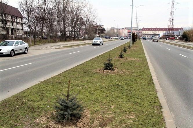 Bulevardul Dem Radulescu din Ramnicu Valcea isi va schimba infatisarea
